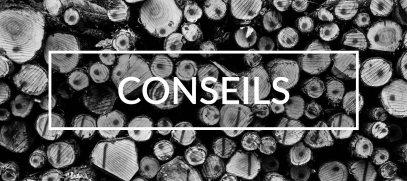 Conseils témoignages et astuces pour l'élagage et les travaux en hauteur