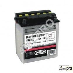 Batterie sèche au plomb 12N12A-4A-1