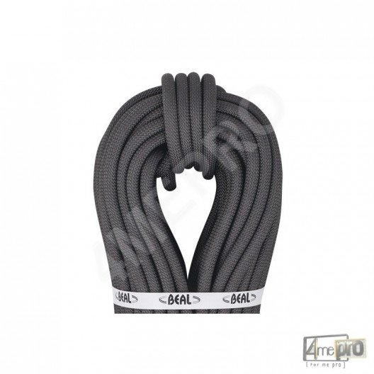 Corde Raider Tactic 11 mm BEAL